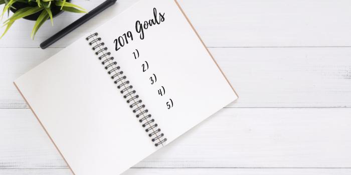 2019 Goals (1)-1