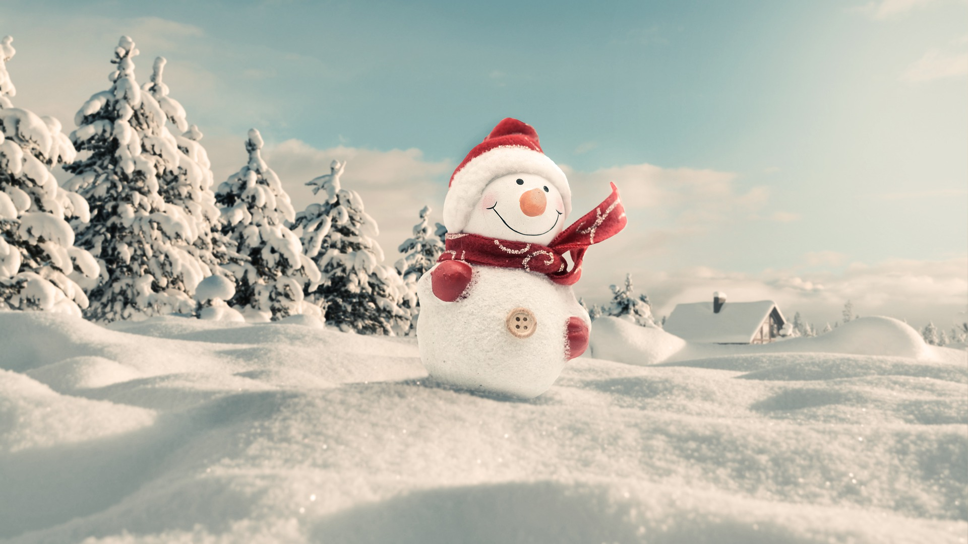 snowman-4663395_1920